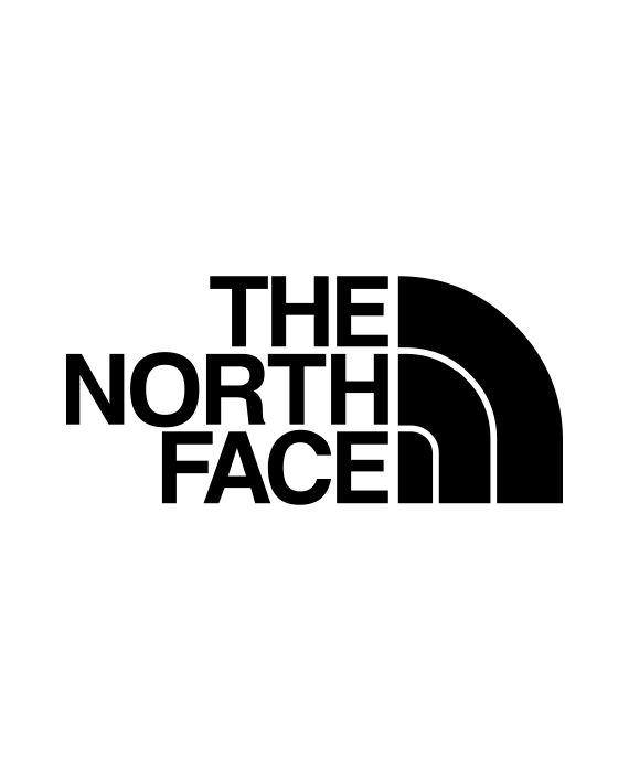 pegatina the north face logo