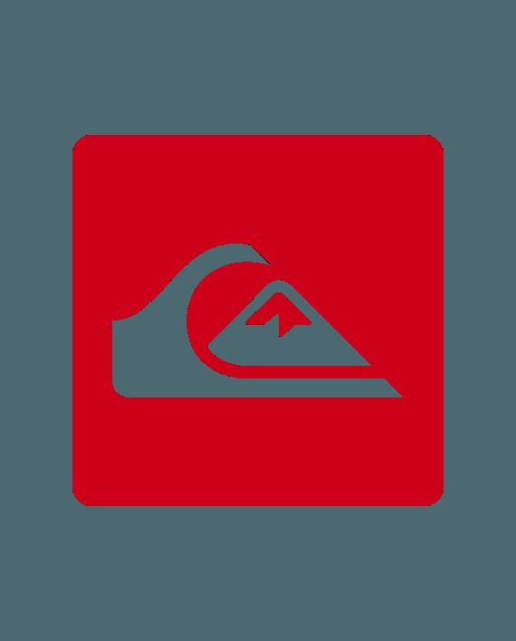 pegatina quiksilver vinilo